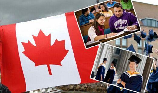 加拿大生子,传言不能轻易相信?