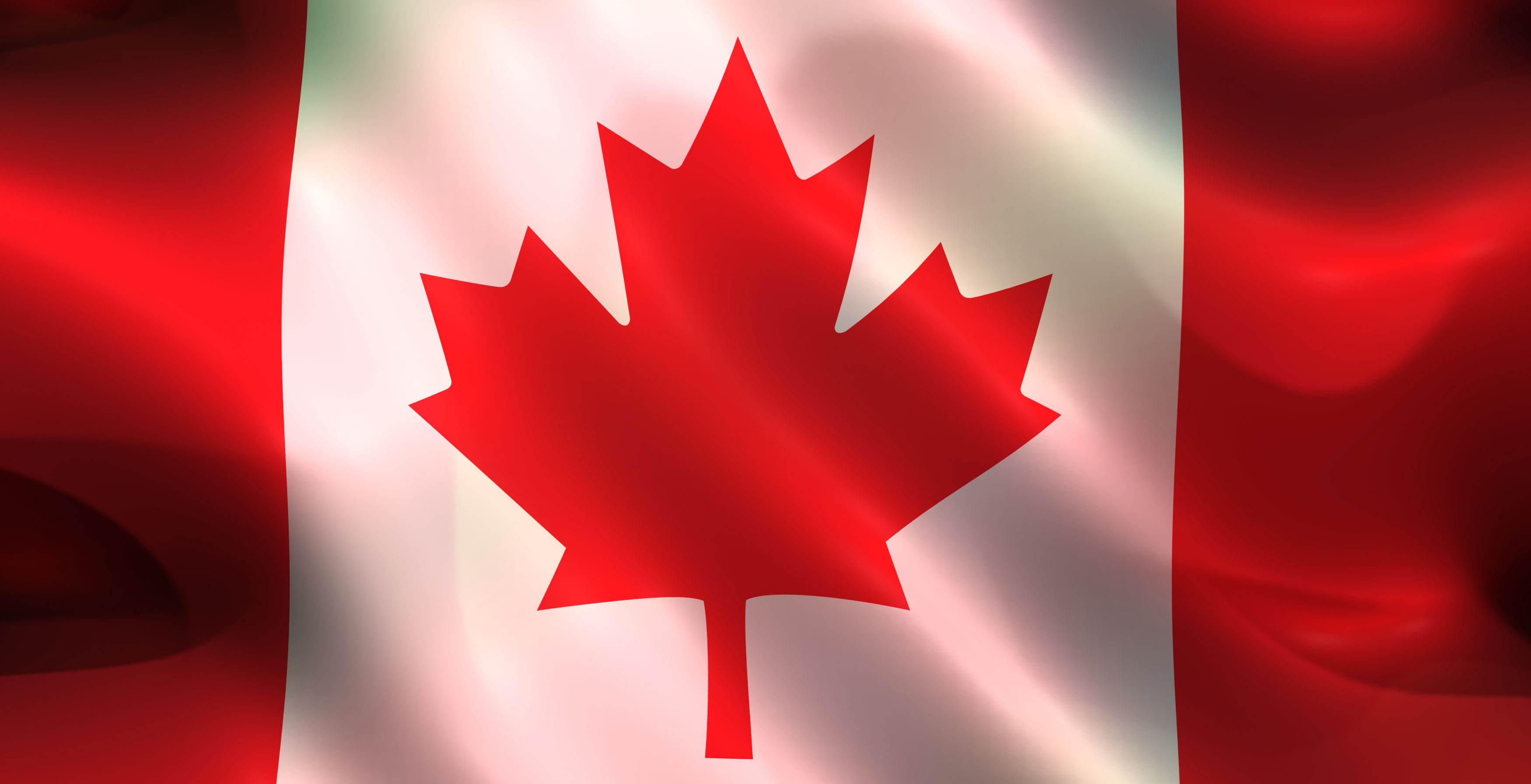 最新加拿大生子具备福利有哪些?